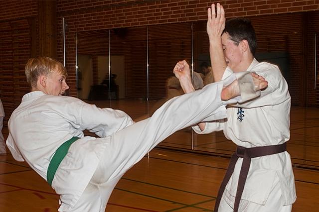 Kumite træning Nov 2014
